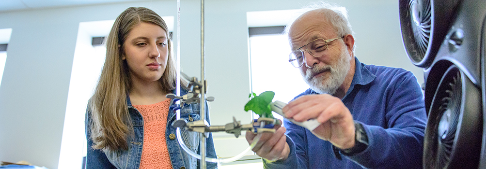 female student looks on as science professor works with green plants in an experiement